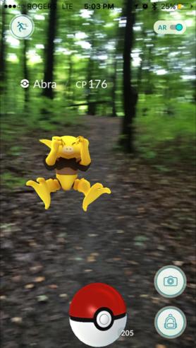 Pokemon Go Sunnybrook Park